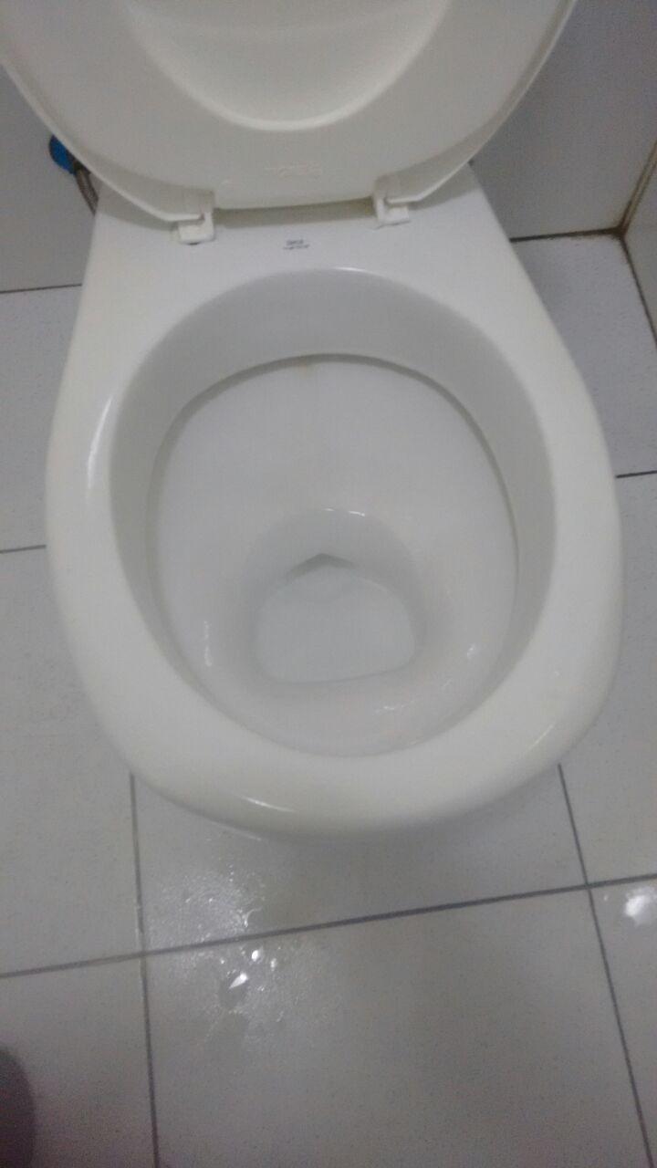 desentupimento de vasos sanitários